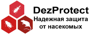Логотип DezProtect