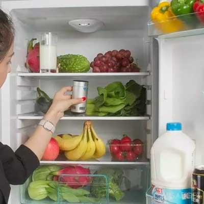 Картинка девушка убирает продукты в холодильник перед уничтожением клопов