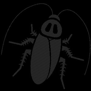 Картинка таракан черный